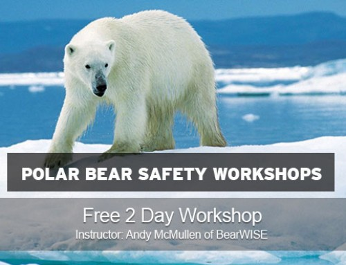 Polar Bear Safety Workshops