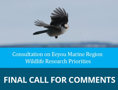 Consultation on Eeyou Marine Region Wildlife research priorities